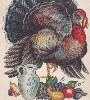 small Thanksgiving image